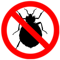 bed bug control solutions in Toronto
