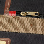 bed-bugs-suitcase